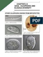 2-2Protozoa Ciliophora Heliozoa