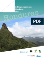 Informe Financiamiento Honduras