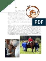 psicomotor - Equinoterapia