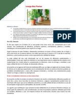Las Plantas y La Contaminacion
