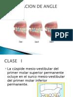 Expocicion Del Analisis Esqueletico...