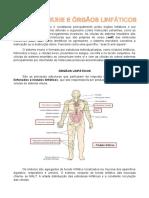 Resumo Histologia Do Sistema Imune e Órgãos Linfáticos