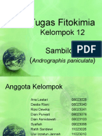 Flavonoid Sambiloto (Kelompok 12)