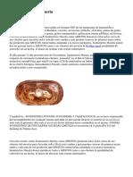 Material De Fontaneria