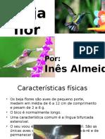 Beija Flor - Ines Almeida