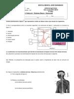 Ficha Trabalho - sistema_neuro-hormonal.pdf