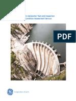 GEA31236Final-HydroTestInspectConditionAssessmentService-.pdf