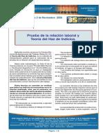DL Haz de Indicios Consignas.pdf