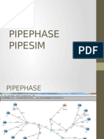 Pipephase y Pipesim