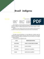 Telecurso 2000 - Ensino Fund - História do Brasil 05