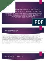 Función Renal Mediante El Analisis e Interpretacion De