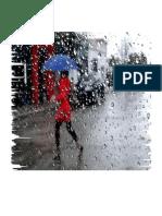Desastres Generados Por Fenómenos Meteorológicos o Hidrológicos