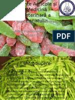 Aditivi alimentari –Guma Guar (E 412.pptx