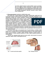 Examinarea Clinică În ORL (Manu) București, 2007_Part10