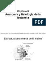 3 Anatomía y Fisiología de La Lactancia Final