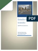 Aforo Ingenieria de transito