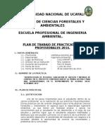Plan de Practicas Universidad Nacional de Ucayali. Kelsen