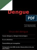 Dengue Csu