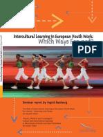 ICL in European Youth Work En