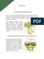 Artrologia Cabeza y Tronco