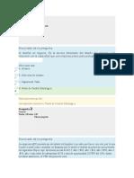 Examen Parcial - Semana 4 - Gerencia Financiera