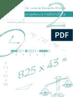 competencia_matematica_prueba2