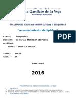 Practica-Bioquimica-1-1lipidos.docx