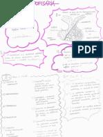 Corrida Hipofisária fisiologia.pdf