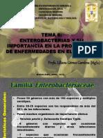 Tema 6. Enterobacterias