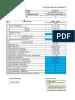 Proiect-Fise-Redresarea-firmei simtinica.xlsx