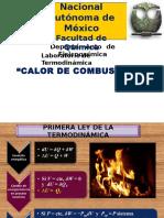 UNAM_P9_calor de combustión Manejo datos.ppt