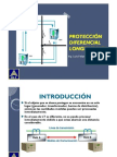 2.1 PROT DIFERENCIAL LINEAS
