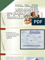 Industria Del Almidon (1)