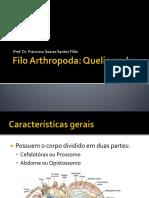 Artropodes_Quelicerados