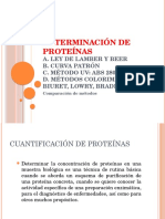 2d Determinacion de Proteinas