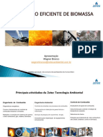Apresentação Combustão de Biomassa