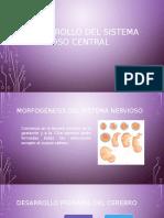 Desarrollo Del Sistema Nervioso Central1