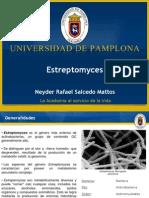 Streptomyces sp