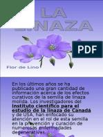 semillas-de-lino-y-salud-1195596170695631-2