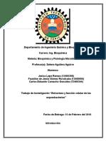Arqueobacterias (ES)
