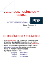 Clase N 5 PL STICOS Caracter Sticas Pir Genas Gabriel Rodriguez