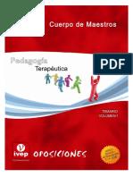 Pedagogía Terapéutica Tema 10