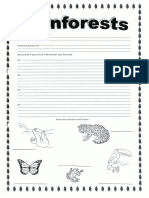 rainforest worksheet-what where