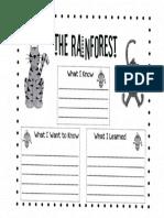 rainforest kwl chart 1