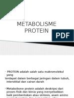 Ppt Metabolisme Protein