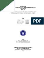 Perakitan Tanaman Cabai Transgenik Tahan Terhadap Cucumber Mosaic Virus Cmv (