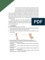 3b. Lp Fracture
