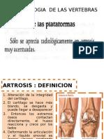 Reumatologis de Las Vertebras