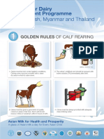Golden Rule English