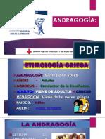 ORGANIZADORES GRAFICOS - ANDRAGOGÍA..